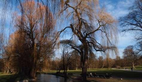 漫步英國公園 The Englischer Garten.德國慕尼黑自由行